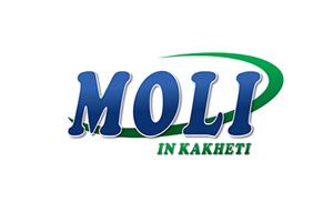 MOLI in Kakheti